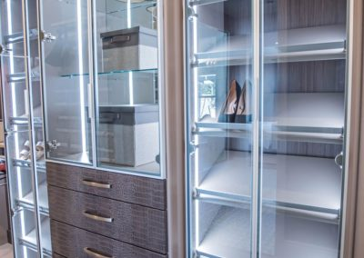 crocodile pattern drawer fronts and slightly tinted aluminum-framed glass doors